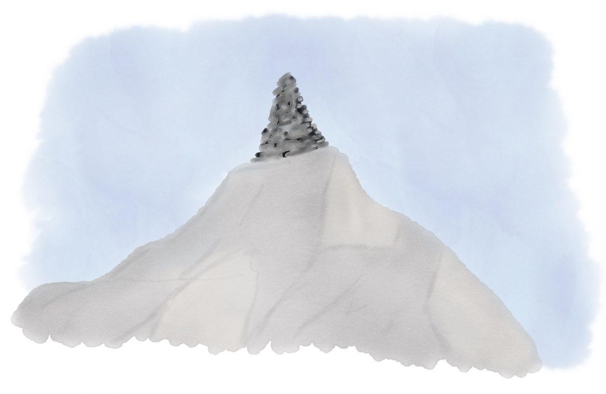 Topptur-sug