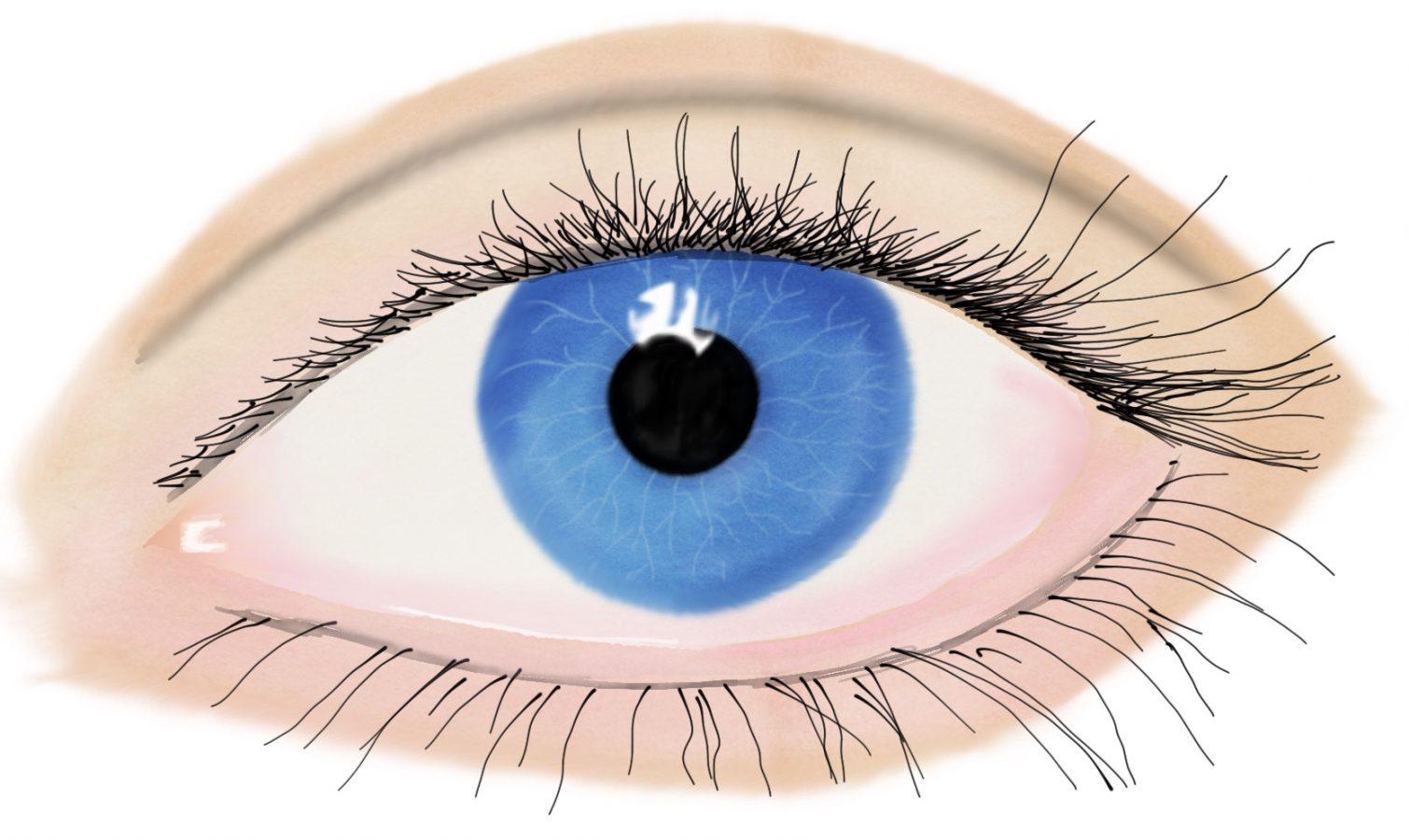 Lek med synssansen
