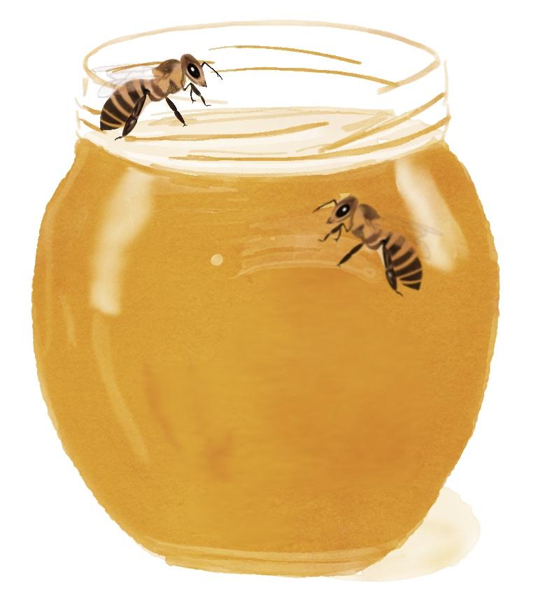Dryppende honning